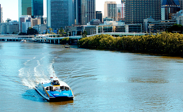 CityCats, CityHopper and Ferry Services