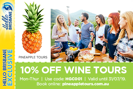 Discount Coupon – Pineapple Tours